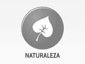Nature-no-image-medium