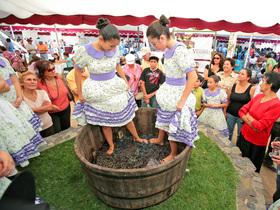 Fiesta Internacional de La Vendimia