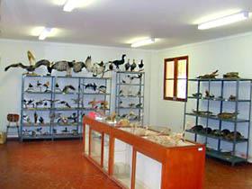 Museo Regional Leoncio Prado (Universidad Nacional Hermílio Valdizán)
