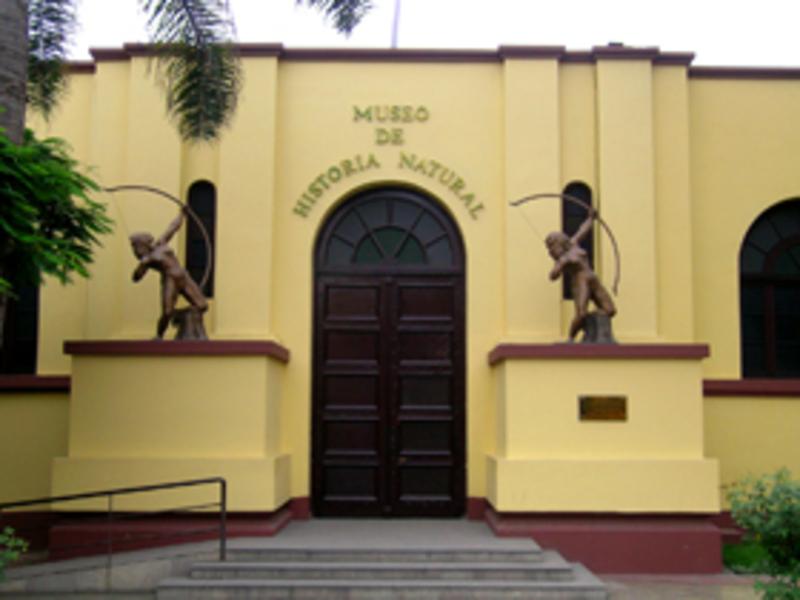 Museo de Historia Natural (Universidad Nacional Mayor de San Marcos)