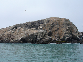 Islas Palomino