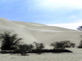 El desierto de Sechura