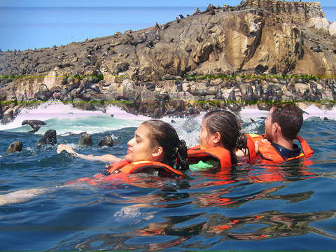 Islas de Callao + Swimming With Sea Lions in Palomino Islands