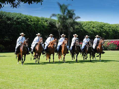 Pachacamac + Paso Horse Show