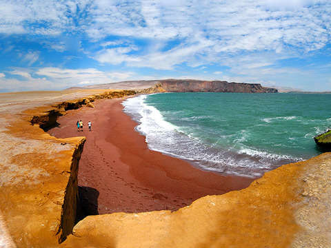 Tour of the Paracas National Reserve
