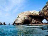 Foto de Full Day Paracas: Islas Ballestas y Reserva desde Paracas