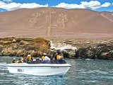Foto de Full Day Ica + Paracas (Diario) - desde Ica ó Paracas