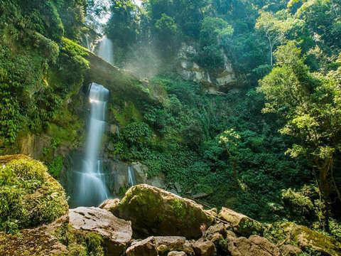 4d/3n Juanjui: Parque Nacional Rio Abiseo + Catarata Breo