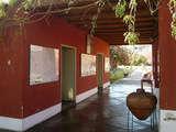 Foto de Tour Terrestre a Lineas de Nazca y Museo Maria Reiche