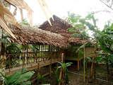 Foto de 4d/3n Iquitos Aventura: Lodge, Alimentación y Excursiones