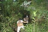 TRECKING EN LA SELVA en 4d/3n Iquitos y Pacaya Samiria