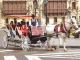 Foto de Paseo en Carruajes de Lujo por el Centro Lima