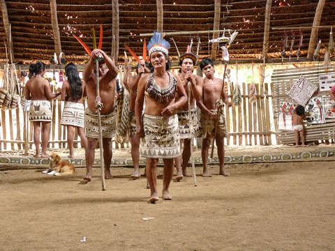 3d/2n Iquitos + Selva Programa Paiche