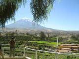 Foto de Tour por la Campiña Arequipeña + Mirabus