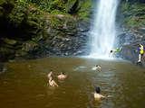 Foto de Tarapoto: Cataratas de Ahuashiyacu