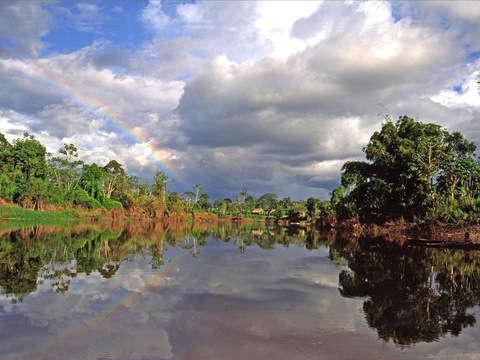 5d / 4n Pacaya Samiria National Reserve Tour