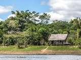 Foto de 5d/4n Tour Reserva Nacional Pacaya Samiria