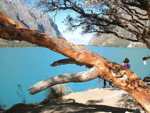 3d / 2n - Huaraz Special - Tours + Hotel 3 *