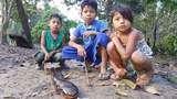 Camping en 4d/3n Explora la Selva de Iquitos