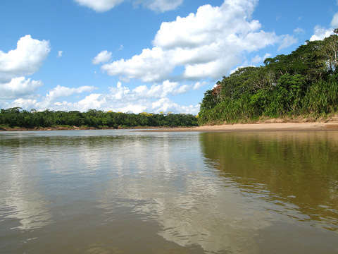 3d / 2n Eco Jungle: Tambopata National Reserve - Lake Sandoval