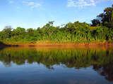 Foto de 4d/3n Reserva Nacional Tambopata: Selva y Aventura