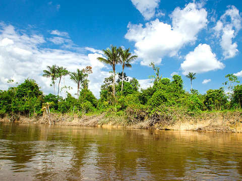 Full Day Rio Nanay, Momon and Amazon: Amazonas Wonderful