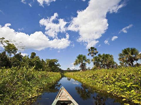 4d/3n Tambopata Natural y Aventurero