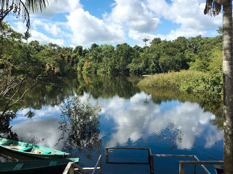 3d/2n Amazonas: Tamshiyacu Tahuayo y Observación de Fauna