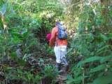 Camino ecológico en Pilpintuwasi.