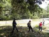 Foto de Full Day: Diversidad en el Bosque del Altomayo