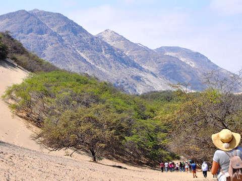 Cañoncillo (San Pedro de Lloc - Pacasmayo) + Sandboarding