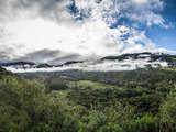 Foto de Trekking: Conociendo el Parque Nacional Yanachaga Chemillén