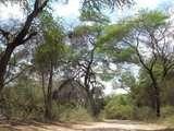 Foto de 2d/1n Imperdible Valle de Lambayecano