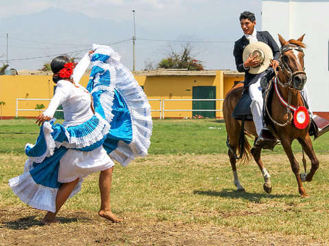 Show: Marinera and Paso Horses