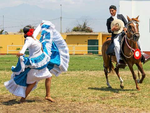 Show: Marinera y Caballos de Paso en Fundo Palo Marino