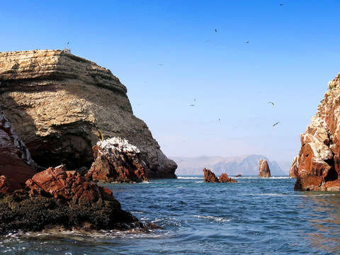 3d / 2n Adventure in Ica, Ballestas Islands and Buggys