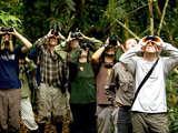 Foto de 5d/4n Ecological Jungle Trips - Caiman Negro