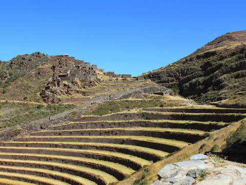 4d / 3n Cusco: Expedition Train + Hotel 4 *