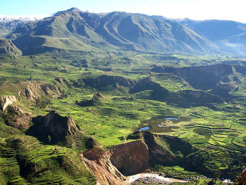 2d / 1n Colca Canyon Tour + 3 * Hotel