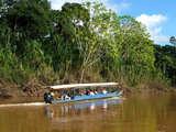 Foto de 5d/4n Loreto: Río Amazonas Majestuoso