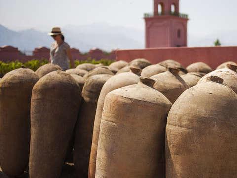Ruta del Pisco + Huacachina (Desde Lima - Domingos)