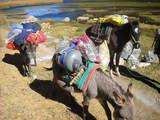 Foto de 4d/3n Trekking a Santa Cruz