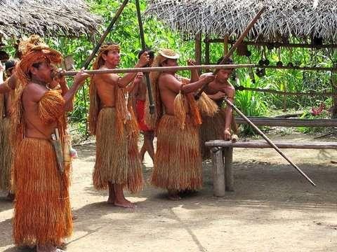Full Day: Navega por el Rio Amazonas