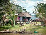 Foto de Full Day: Iquitos en Un Día