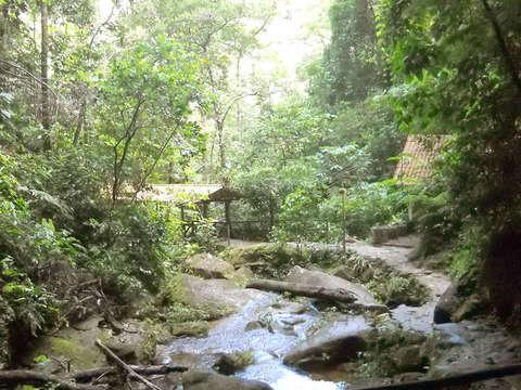 Tour Cataratas de Ahuashiyacu y Comunidad de Lamas
