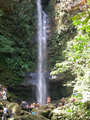 Foto de Tour Catarata de Ahuashiyacu