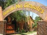 Centro Apícola Mis Girasoles en 2d/1n Disfruta Lunahuana + Hotel 4* (Desde Lima)
