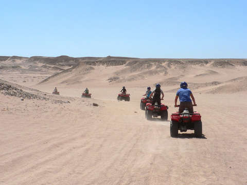 Islas Ballestas + ATVs in Paracas (Everyday)