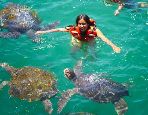 2d/1n Máncora en Ecolodge y Tour Nadando Con Tortugas