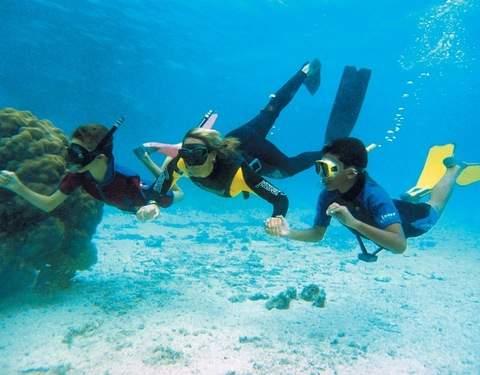 Snorkeling in Playas de Paracas